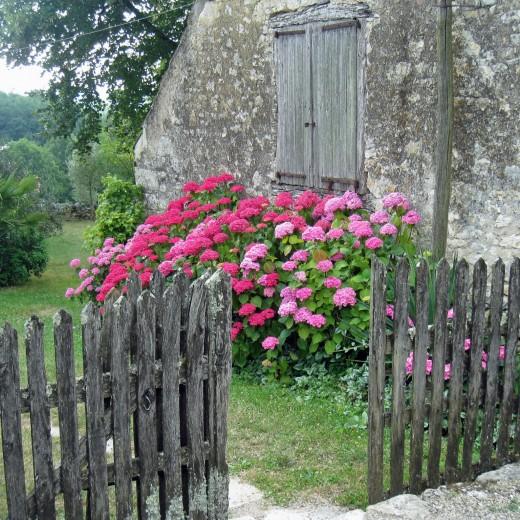 Farmyard in the Dordogne